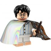 Harry Potter (Invisibility Cloak)