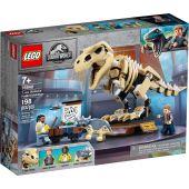 Έκθεση Απολιθωμάτων Δεινοσαύρου T.Rex
